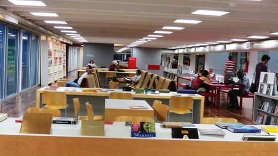 Soraria Magalhães - A Biblioteca Parque do Estado do Rio de Janeiro - imagem6