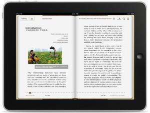Os livros e a internet