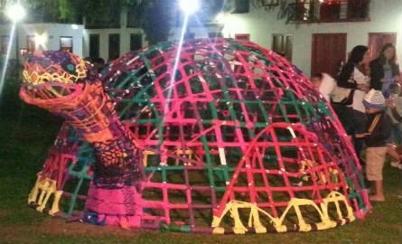 A tartaruga é uma das atrações preferidas das crianças. Foto: Ciça Oliver/Agência Biblioo